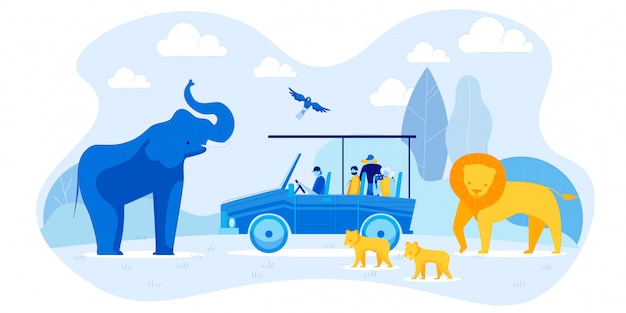 Tourists in car and elephant, lion family, parrot