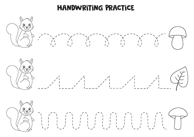 Tracing lines with cute black and white squirrel. writing practice.