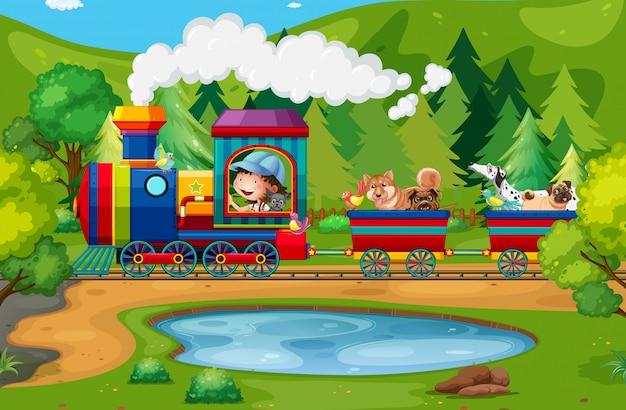 列車と自然