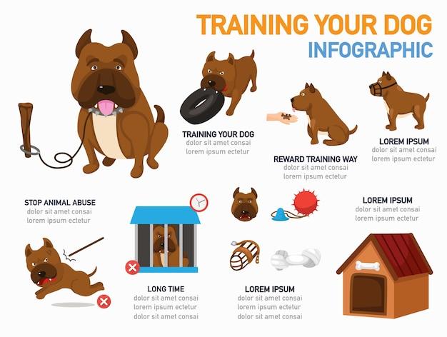 犬のインフォグラフィックのトレーニング、ベクトルイラスト。