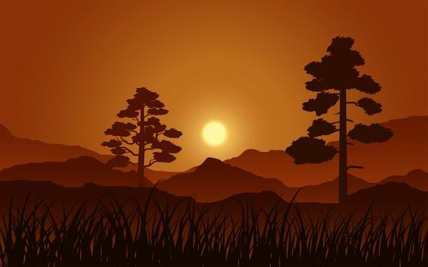 Спокойная ночная сцена в лесу