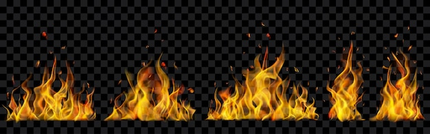 Translucent burning campfires on transparent background