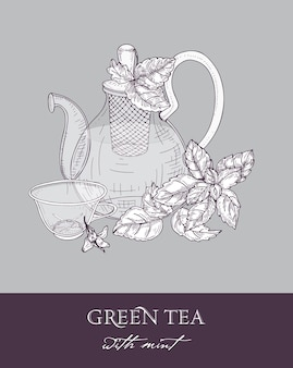 Transparent glass teapot with strainer, cup of green tea and fresh mint leaves