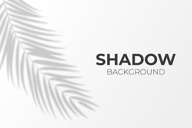 透明な葉が影の効果の背景をオーバーレイします