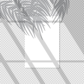 Transparent shadow effect