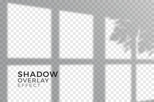 Transparent shadows overlay effect design