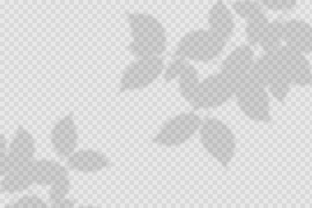 Transparent shadows overlay effect