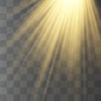 Transparent sunlight, flashlight, blur in the radiance.