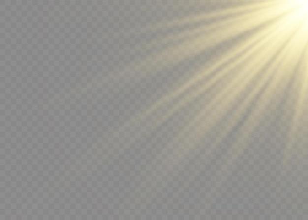 Прозрачный солнечный свет специальные линзы вспышки световой эффект. передняя солнечная линза вспышка. размытие в свете сияния.