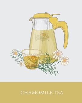 ストレーナー付きの透明なティーポットまたはフィルター付きの水差し、注入されたお茶のカップ、エレガントなヴィンテージスタイルで手描きされたカモミールの花。おいしいハーブドリンク。ラベル、タグのカラフルなイラスト。