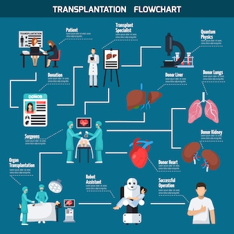 Transplantation flowchart layout