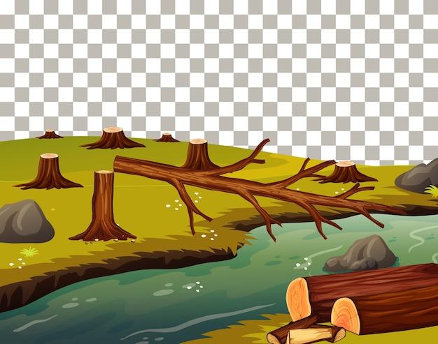 川の横で伐採されている木