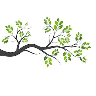 나무 가지 벡터 ilustration 디자인 서식 파일