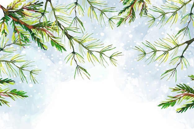 Tree branches christmas watercolor background