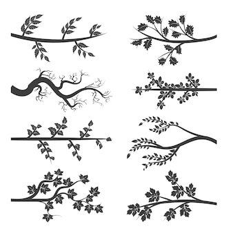 Tree branches with leaves silhouette