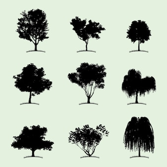 Tree collection flat icon with nine different kind of plants on white illustration