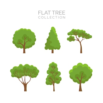 Tree collection in flat style