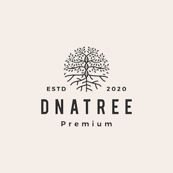 Tree dna roof  vintage logo  icon illustration