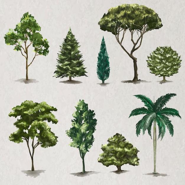 Векторный набор элементов дерева природа живопись