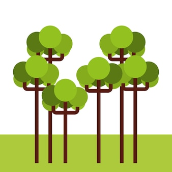 Tree forest landscape icon