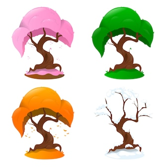Tree in four seasons on white background