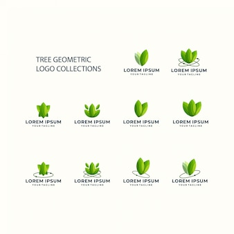 Tree geometric logo set icon template