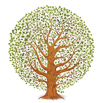 白い背景で隔離の木。 。