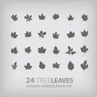 Tree leaf icons collection