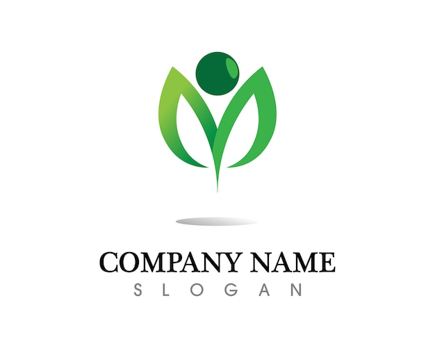 Tree leaf vector logo design, eco-friendly