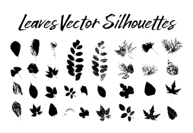Tree leaves silhouettes. plants and nature