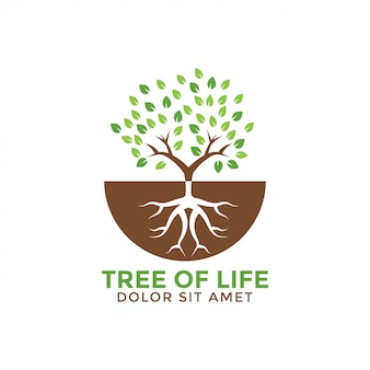 Tree of life graphic design template vector illustration