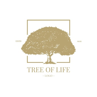 Tree life logo template