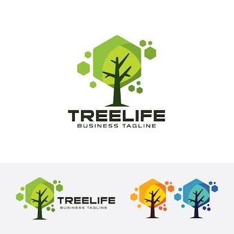 나무 생활 벡터 로고 템플릿