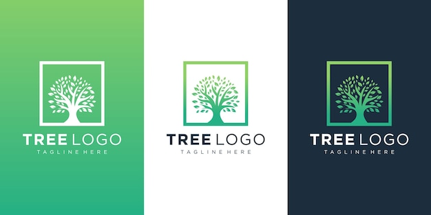 Tree logo design in line art style
