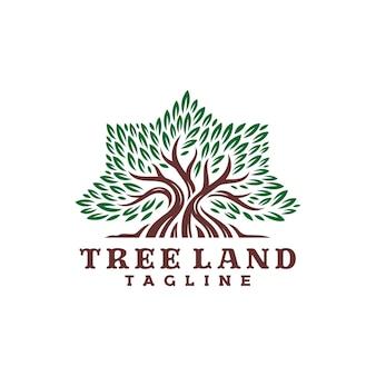 Tree logo in shape octagonal star. logo template.