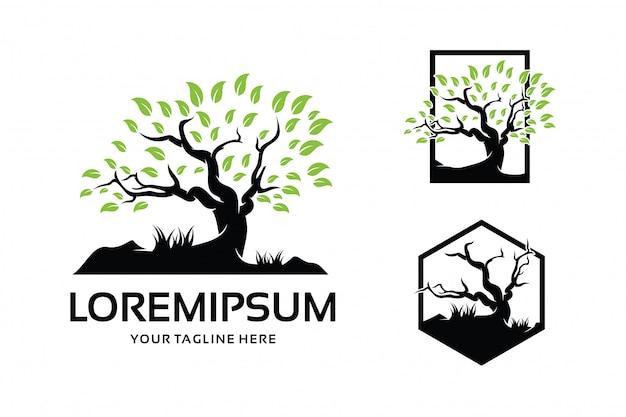 Шаблон логотипа дерево дизайн вдохновение