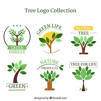 フラットスタイルのツリーロゴコレクション