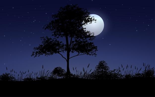 나무 밤 달빛 풍경