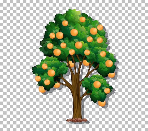 Дерево на прозрачном фоне