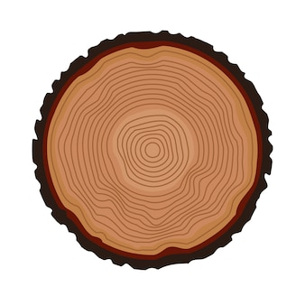 Tree rings background. annual tree. vector illustration