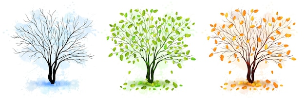 Tree seasons nature illustration