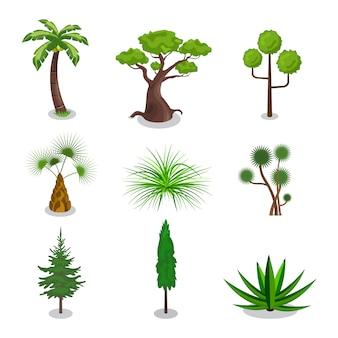 Tree set3