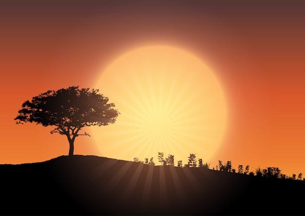 Tree silhouette against sunset sky