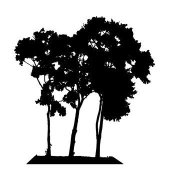 Силуэт дерева, изолированные на белом backgorund. векторная иллюстрация. eps10