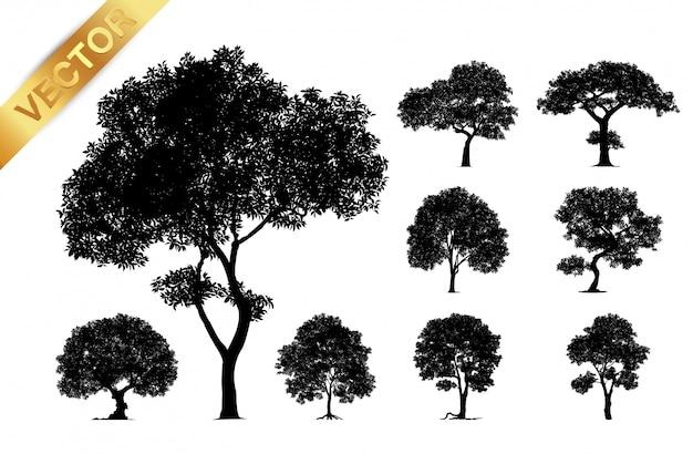 木のシルエットは、白い背景で隔離。