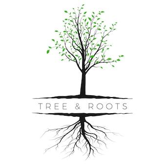 緑の葉と根と木のシルエット。生態学と自然の概念。白い背景で隔離のベクトル図