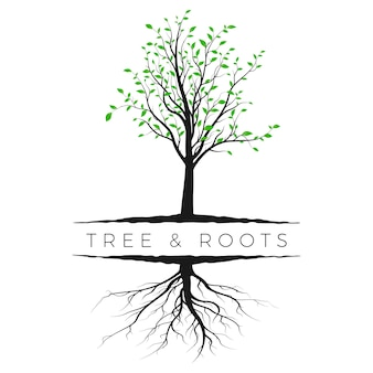 Tree silhouette with green leaves and root. ecology and nature concept. vector illustration isolated on white background