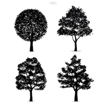 Tree silhouettes isolated on white background.
