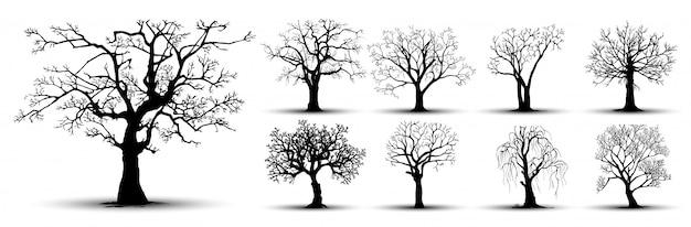 나무 실루엣 세트