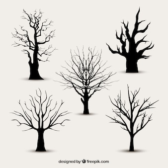 Tree silhouettes without leaves